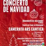 Concierto de Navidad. cartel